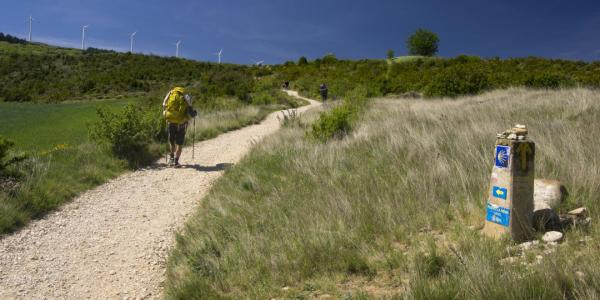 Camino de Santiago / Getty images